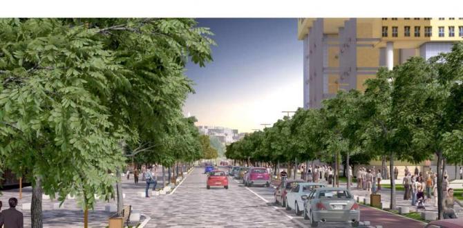 Trabzon Caddesi Yayalaştırılacak.