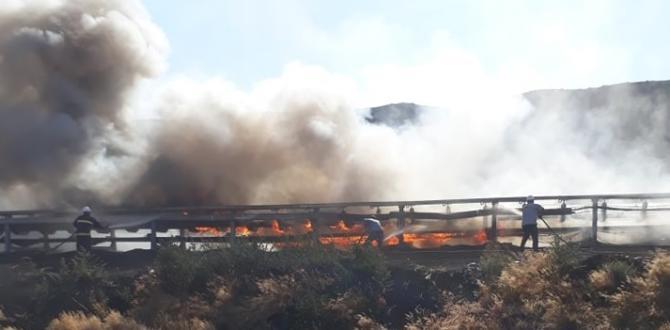 Bant Yollarında Yangın Korkuttu.